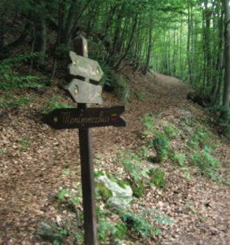 Limone Piemonte in Primavera: Escursione al Monte Vecchio (1920 m.)